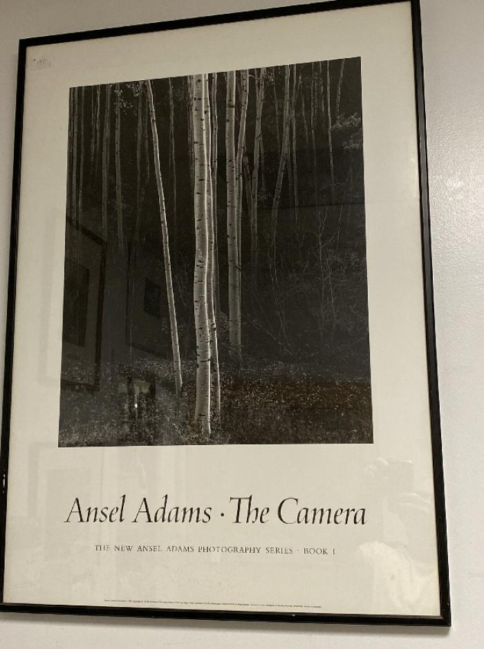 Ansel Adams poster Aspens Northern New Mexico 1958