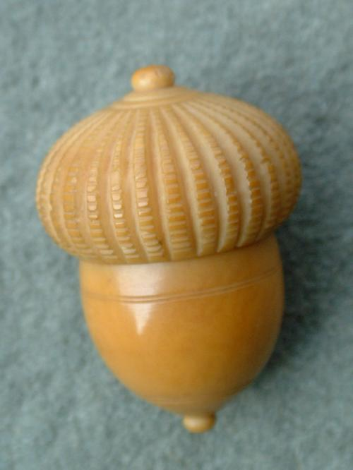 Antique vegetable ivory thimble and case