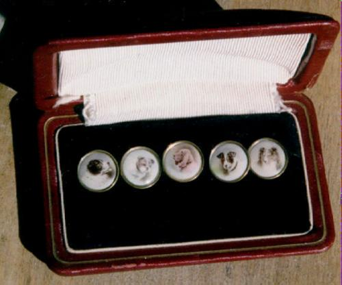 Victorian cuff links with photographs of dogs