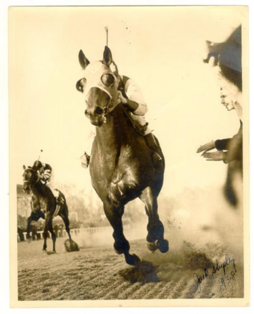 Seabiscuit photograph with War Admiral Pimlico