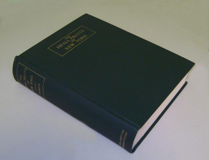 The Small Fruits of New York by Hedrick c1925