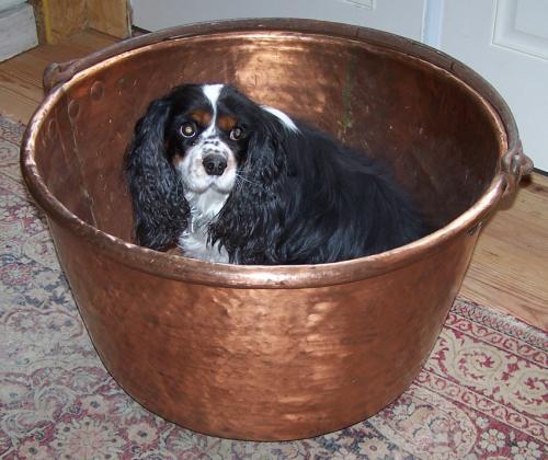 Huge American copper cauldron with iron handle c1850