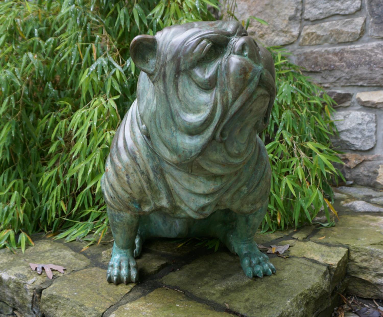 Life size bronze bull dog sculpture