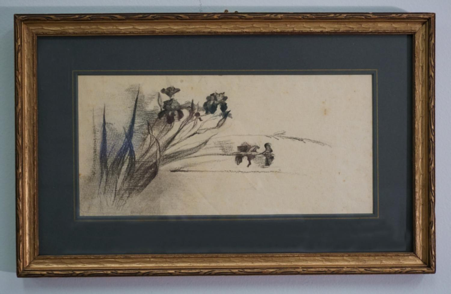 Charcoal drawing of irises by Fannie Burr c1900