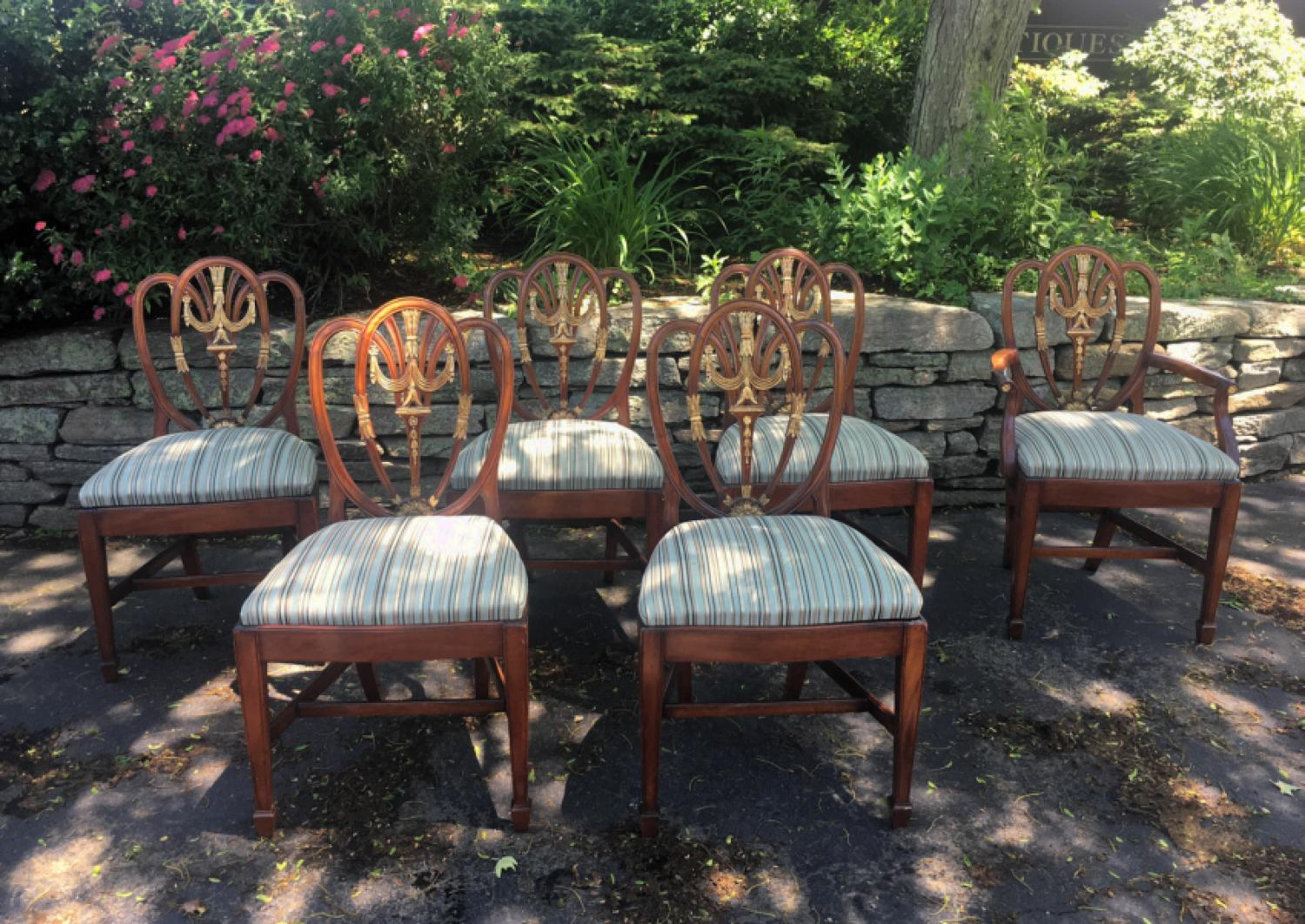 Antique Sheraton shield back style dining chairs c1880